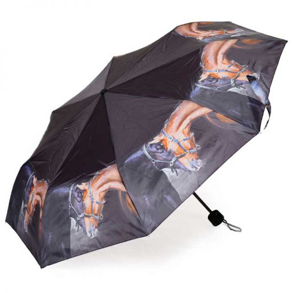 Country Matters Old Friends Folding Umbrella